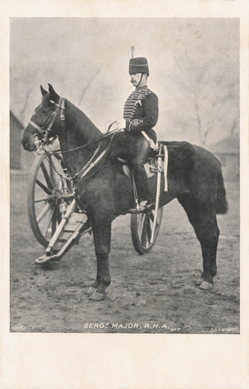 7  -  Sergt Major, R.H.A
