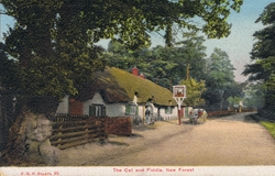 95  -  The Cat and Fiddle, New Forest