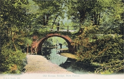 1007  -  Old Roman Bridge, New Forest