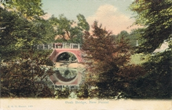 1008  -  Bush Bridge, New Forest
