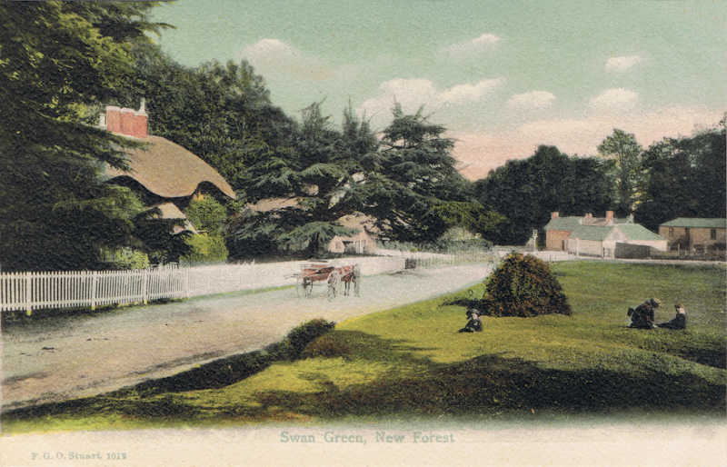 Swan Green, New Forest