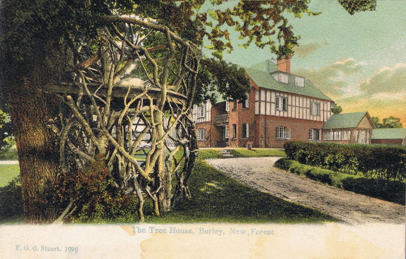 The Tree House, Burley, New Forest
