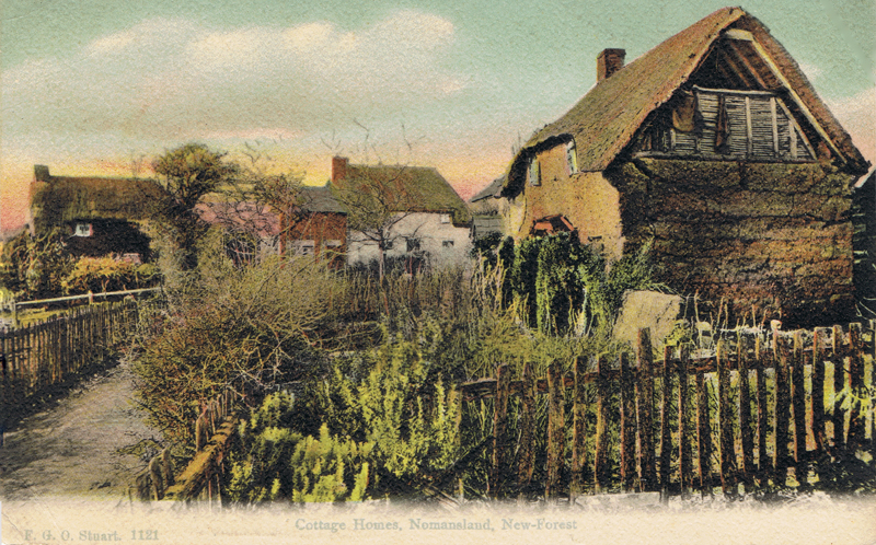 Cottage Homes, Nomansland, New Forest