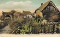1121  -  Cottage Homes, Nomansland, New Forest