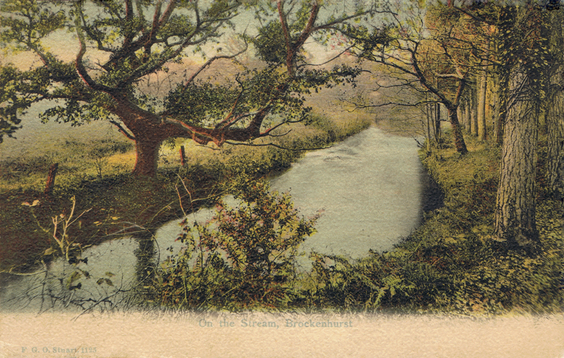 On the Stream, Brockenhurst