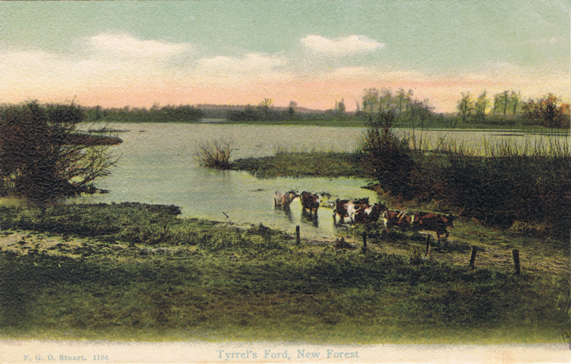 Tyrrel's Ford, New Forest