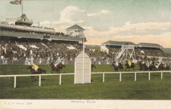 1196  -  Newbury Races