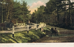 1212  -  Ivy Bridge, Brockenhurst
