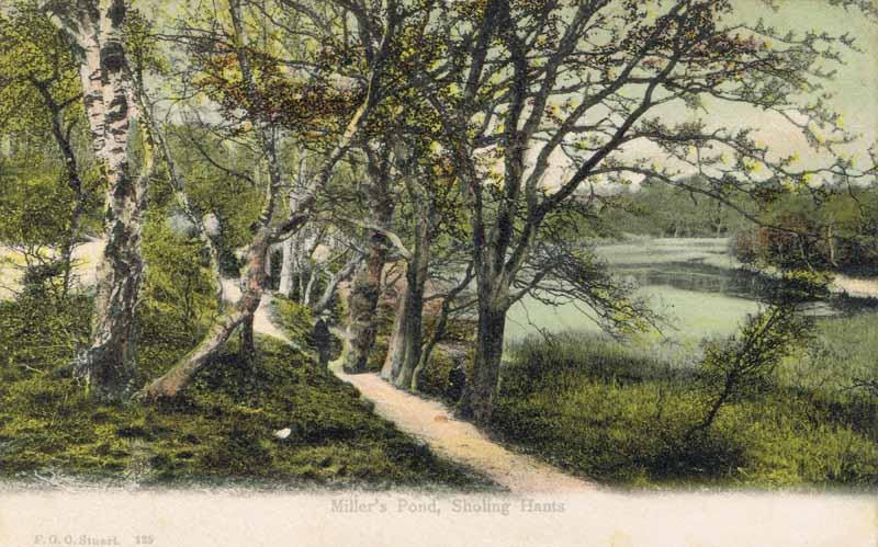 Miller''s Pond, Sholing