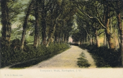 1258  -  Tennyson's Walk, Farringford, I. W.