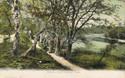 125  -  Miller''s Pond, Sholing