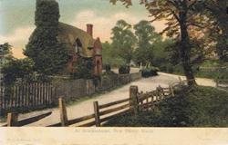 1315  -  At Brockenhurst, New Forest, Hants
