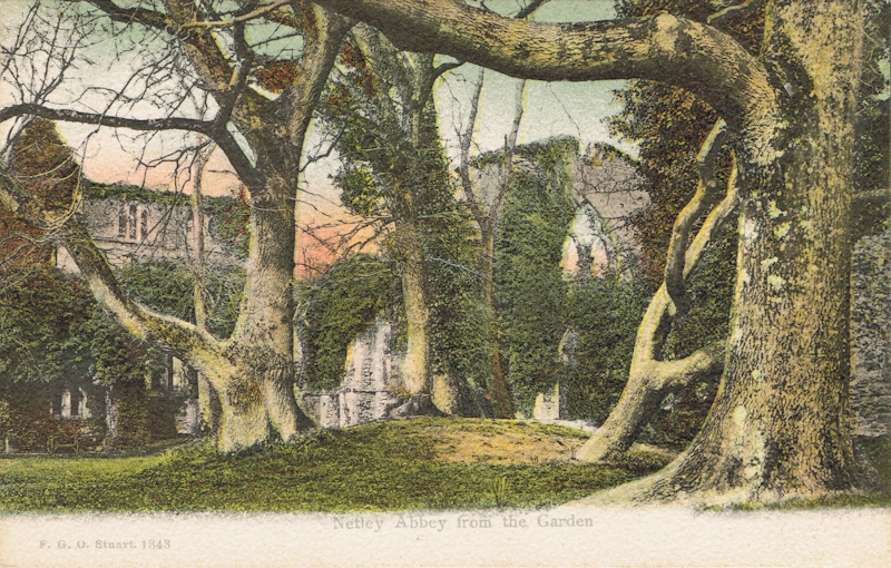 Netley Abbey From The Garden