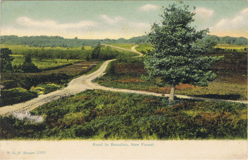 Road to Beaulieu, New Forest