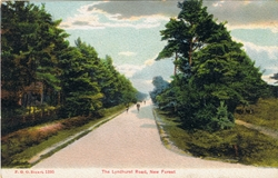 1395  -  The Lyndhurst Road, New Forest