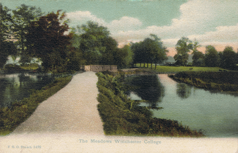 The Meadows, Winchester College