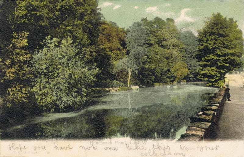 168  -  Bonchurch Pond, I. of W.