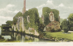 907  -  Priory Ruins, Christchurch