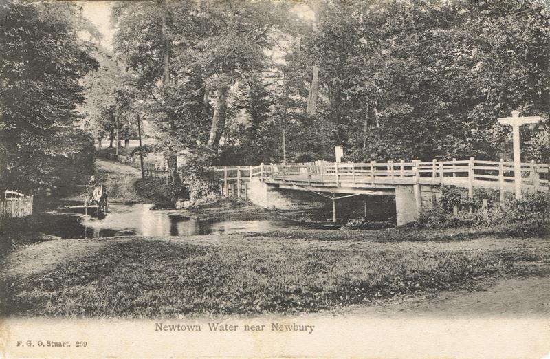 Newtown Water near Newbury