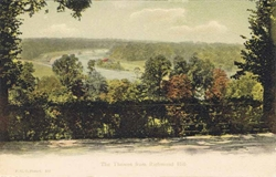 350  -  The Thames From Richmond Hill