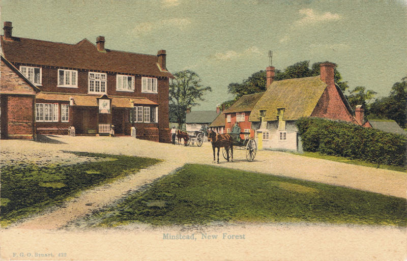 Minstead, New Forest