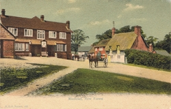 422  -  Minstead, New Forest