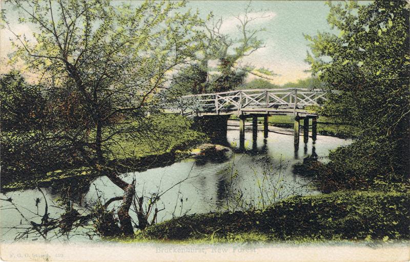 459  -  Brockenhurst, New Forest
