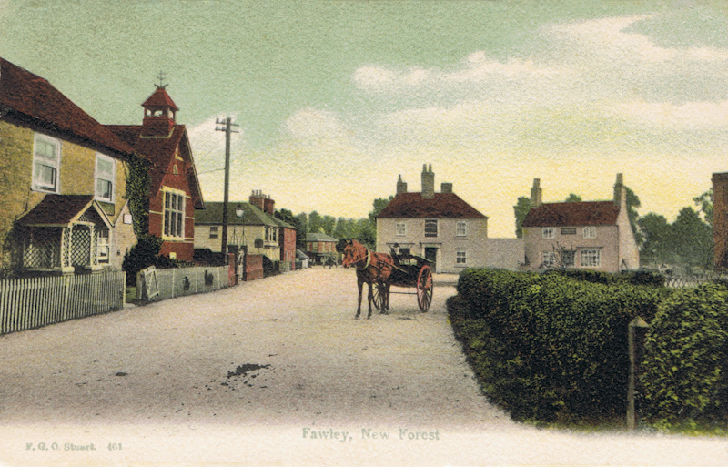 Fawley, New Forest