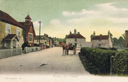 461  -  Fawley, New Forest