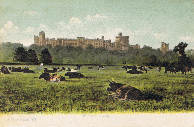 473  -  Windsor Castle