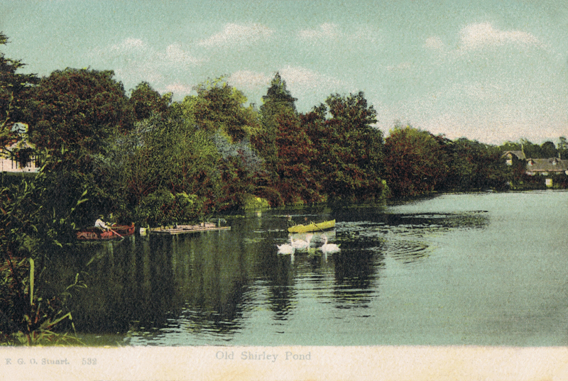 Old Shirley Pond