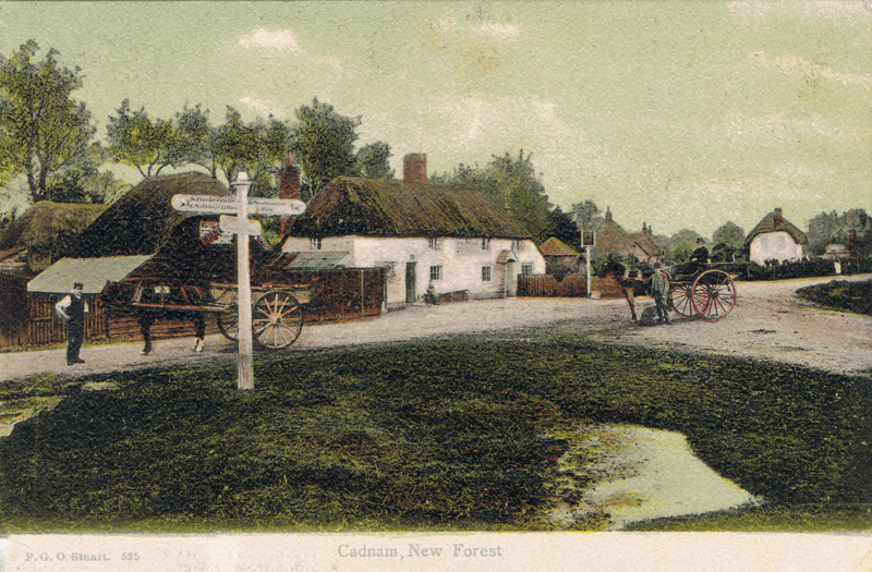 Cadnam, New Forest