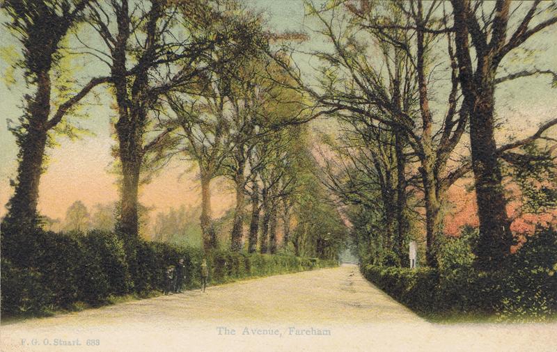 The Avenue, Fareham