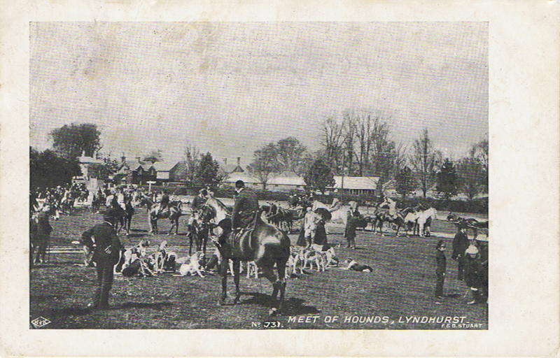Meet of Hounds, Lyndhurst