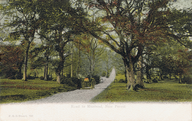 Road to Minstead, New Forest