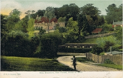799  -  Miss Braddons New Forest Home at Bank