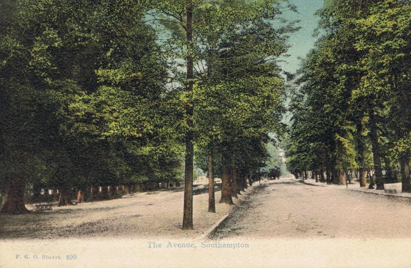 The Avenue, Southampton