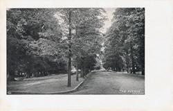 1092  -  The Avenue