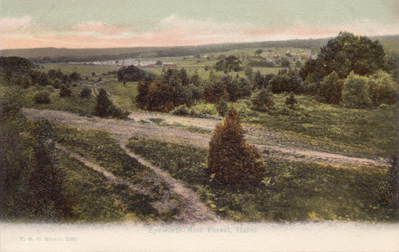 Eyeworth, New Forest, Hants