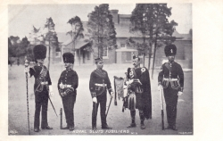 5  -  Royal Scots Fusiliers
