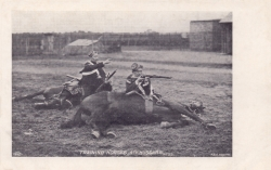 35  -  Training Horses, 4th Hussars