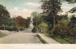 1195  -  Rufus Lane, Chandler's Ford, Hants