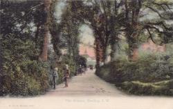 1248  -  The Avenue, Brading, I. W