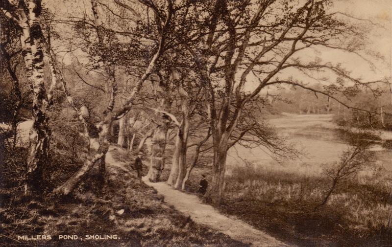 Miller's Pond, Sholing