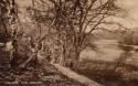125  -  Miller's Pond, Sholing