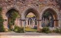 1342  -  Netley Abbey, the Chapter House