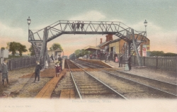1345  -  Downton Station, Wilts