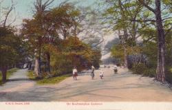 1386  -  On Southampton Common
