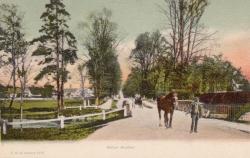 1513  -  Wilton Avenue