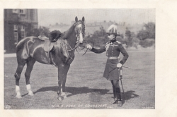 41  -  H. R. H, Duke of Connaught